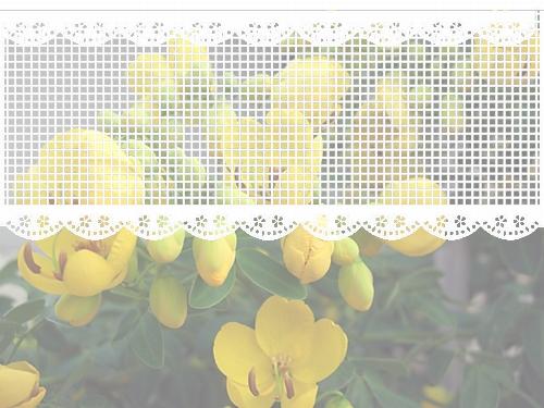 f0031546_2013485.jpg