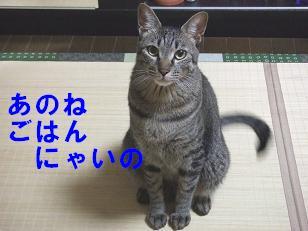 b0118850_10483538.jpg
