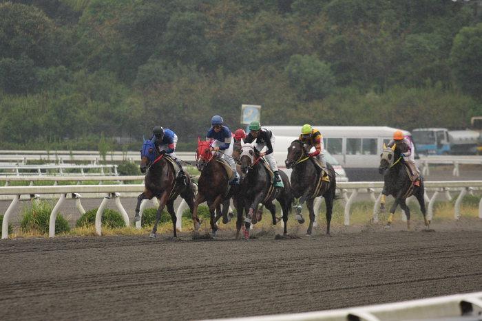 2008年9月15日(月) 高知競馬 3R_a0077663_1823061.jpg