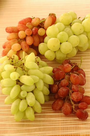 めずらしい葡萄4種!_c0116778_9122959.jpg