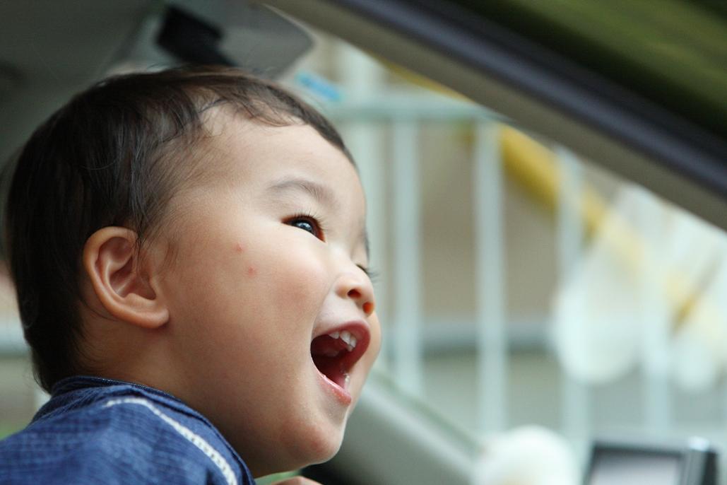 明日は孫達と・・・ドライブ~! 「軽井沢300キロ」なり。_e0143883_2114361.jpg