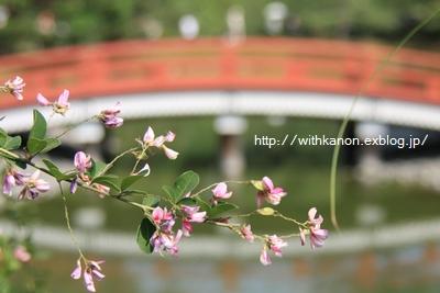 京都バス旅行*平等院編*_d0148187_1281544.jpg