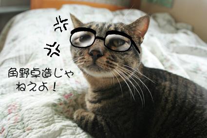 愛と桃=お笑いハリセンボン??_d0071596_1727325.jpg