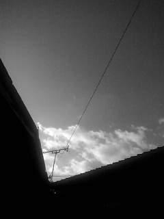 f0100480_17175933.jpg