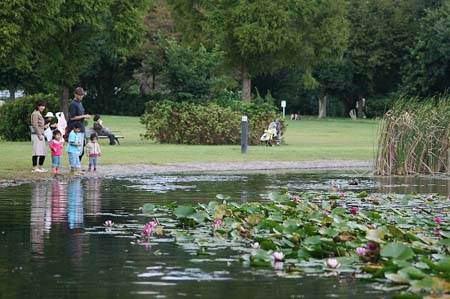見沼自然公園.さぎやま記念公園へドライブ_f0030085_1912315.jpg