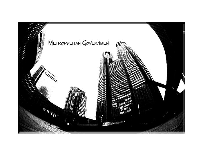 The Tokyo Metropolitan Government._e0139093_105517.jpg