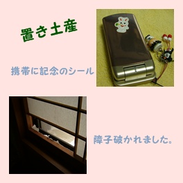 豆台風一過_c0051105_231219.jpg