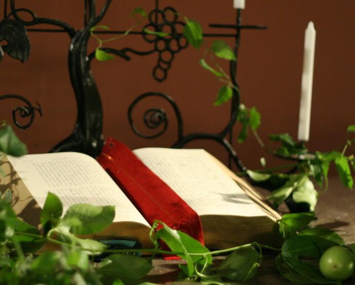 東京女子大学 教会の装花 白バラの時_a0042928_21524684.jpg