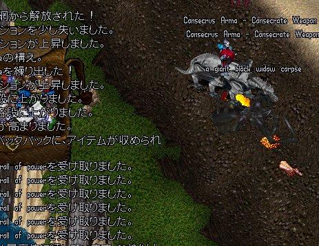 b0089730_06213.jpg