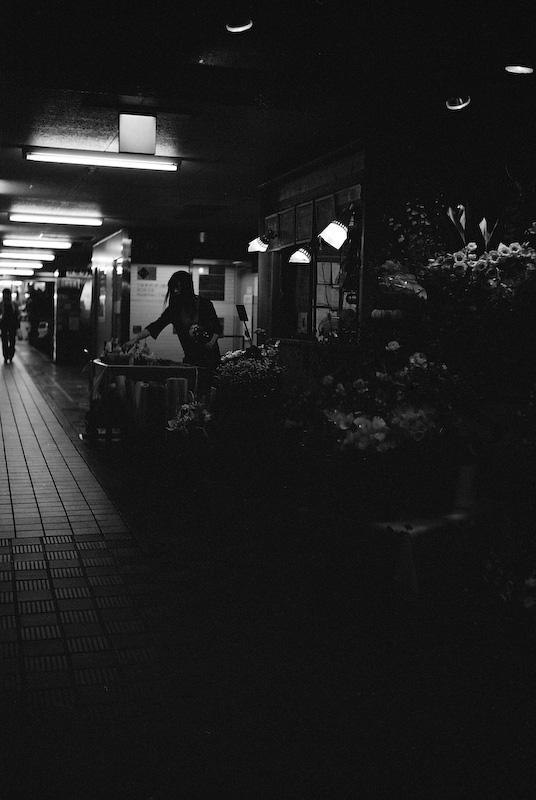 夜遊び(文字通り)_c0084666_8103898.jpg