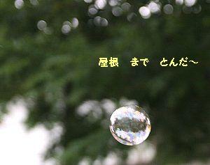 b0021297_1833119.jpg