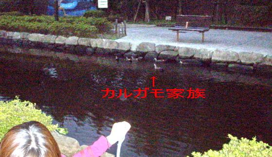 c0138198_16533058.jpg