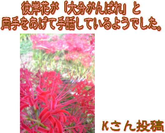 d0070316_17523250.jpg