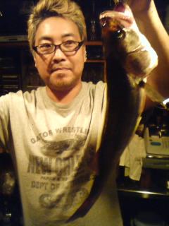 三番瀬江戸前スズキ_c0157833_14464189.jpg
