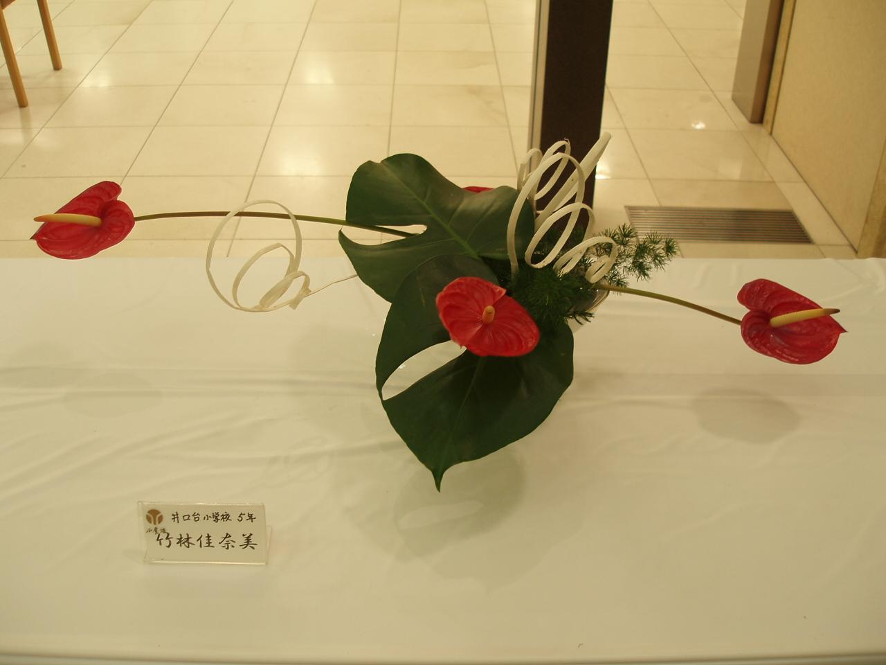 花展へ行きました♪_b0137453_2229523.jpg