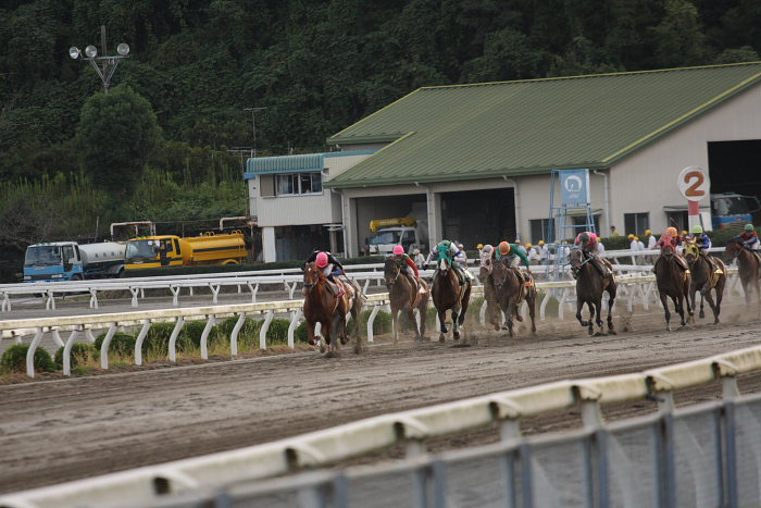 2008年9月27日(土) 高知競馬 10R 一発逆転 ファイナルレース_a0077663_1934048.jpg