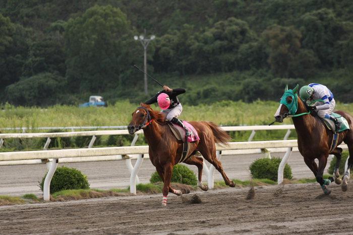 2008年9月27日(土) 高知競馬 10R 一発逆転 ファイナルレース_a0077663_1935111.jpg