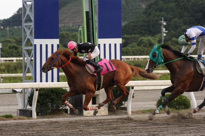 2008年9月27日(土) 高知競馬 10R 一発逆転 ファイナルレース_a0077663_194079.jpg