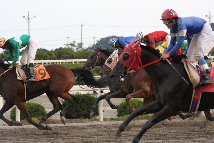2008年9月27日(土) 高知競馬 10R 一発逆転 ファイナルレース_a0077663_1942811.jpg