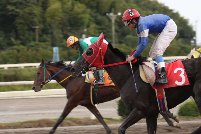 2008年9月27日(土) 高知競馬 10R 一発逆転 ファイナルレース_a0077663_1943864.jpg
