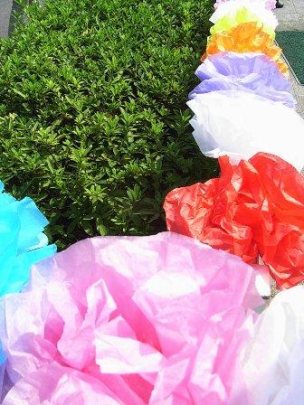 紙の花&花_d0105967_1954373.jpg