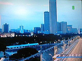 シンガポールGP(II)_f0025970_2135076.jpg