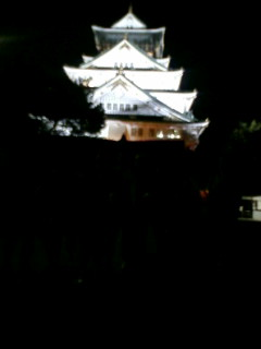 夜の大阪城!_b0050787_9591524.jpg