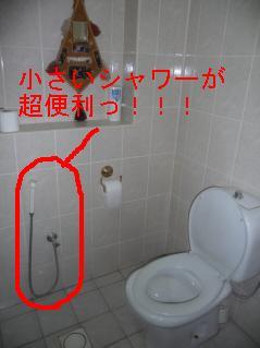 f0115107_2502294.jpg