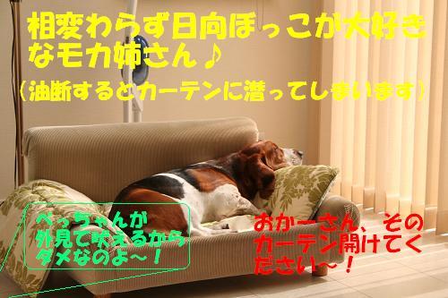 f0121712_17113956.jpg