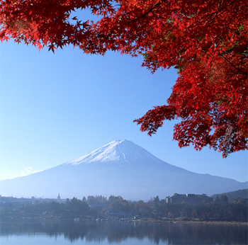 ★★秋のイベントのご紹介★★_b0115529_11241565.jpg