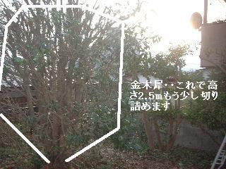 f0031037_1934850.jpg