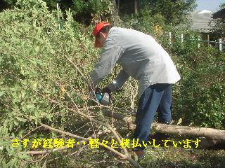 f0031037_2012745.jpg