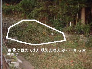 f0031037_20133497.jpg