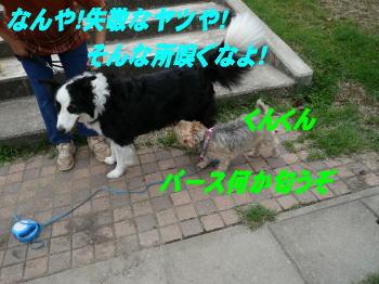 d0013645_12195226.jpg