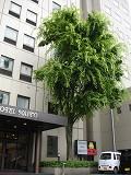 サンパークホテル内藤 クイズ~☆_b0151362_184321.jpg