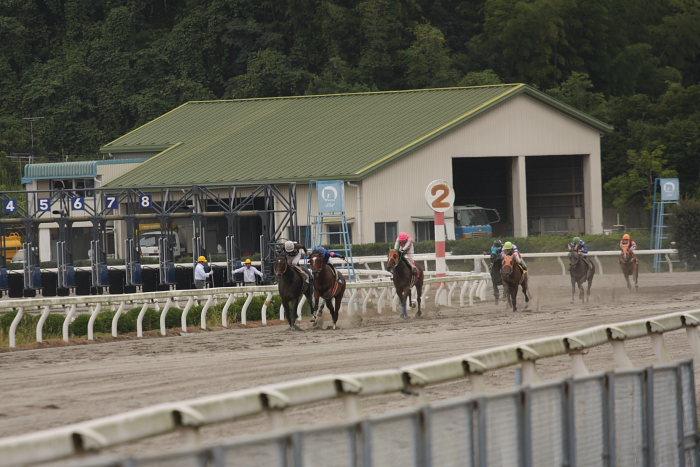 2008年9月28日(日) 高知競馬 3R_a0077663_19272462.jpg