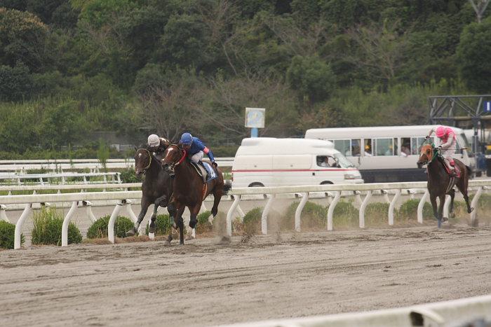 2008年9月28日(日) 高知競馬 3R_a0077663_19273233.jpg