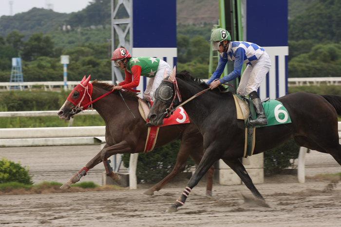2008年9月28日(日) 高知競馬 3R_a0077663_19275631.jpg