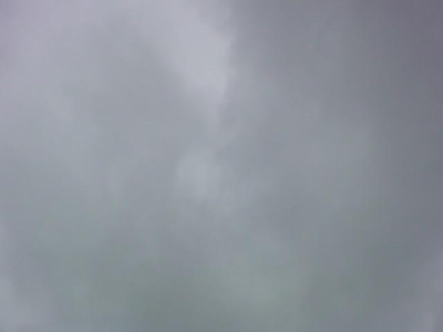 東京は今日も雨…です。_e0051174_7222062.jpg