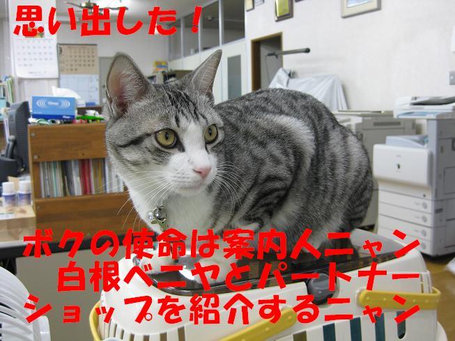 f0187781_1430613.jpg
