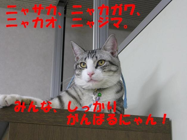 f0187781_1432373.jpg