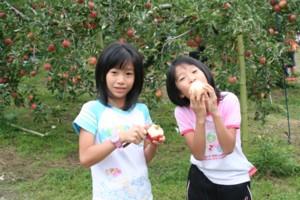 楽しい家族旅行~三瀬りんご狩り~_d0082356_1454529.jpg