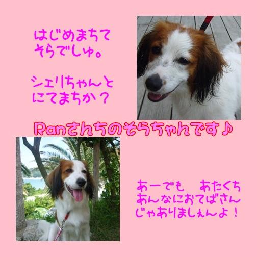 c0075585_1526937.jpg