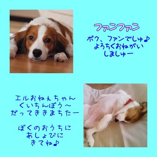 c0075585_15842100.jpg