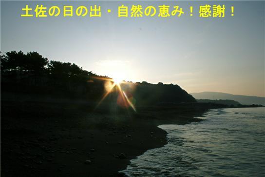 e0012724_1103477.jpg
