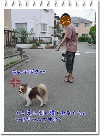 d0013149_12451877.jpg