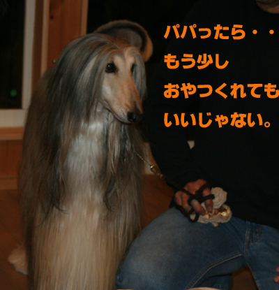 a0018671_162085.jpg