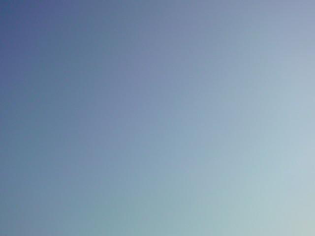 秋晴れ~♪良い天気~♪爽やか~♪♪♪_e0051174_723889.jpg