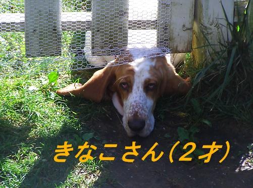 b0067012_730357.jpg