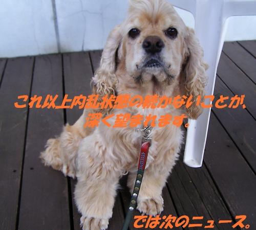 b0067012_855497.jpg